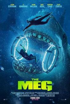 large_meg-poster